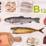 The Importance of the B12 Vitamin